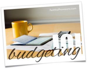 Budgeting 101 Series
