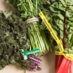 Kale, Swiss Chard, and Other Greens Recipe Exchange