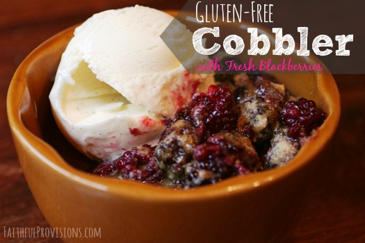 Easy Fruit Cobbler Recipe | Faithful Provisions