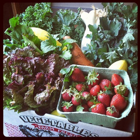 Delvin Farms CSA Box