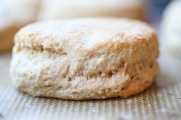 Whole-Wheat-Biscuit-Recipe