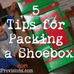 Filling Your Christmas Box: Ideas to Pack the Space