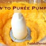 How to Puree Pumpkin