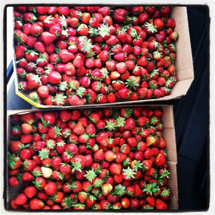 May is National Strawberry Month