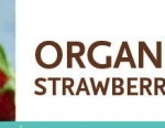 Organic Strawberries Only $1.99 at Whole Foods | Check Your Local Store