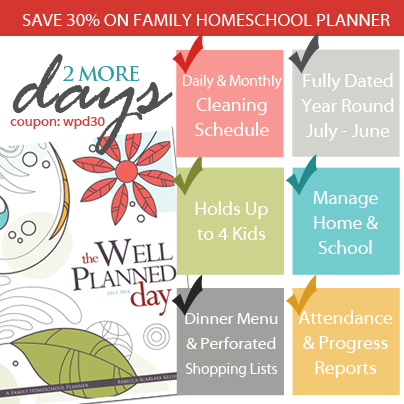 Well Planned Day Planner Sale