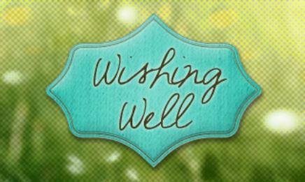 Vanderbilt's Wishing Well Blog