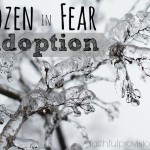 Our Adoption Journey: What Has Me Frozen in Fear