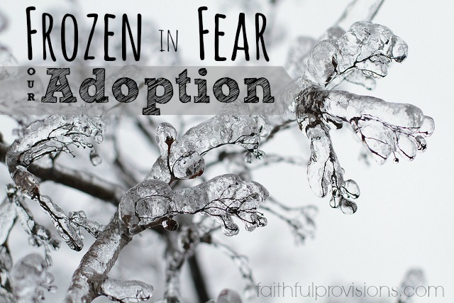 Our Adoption Journey-Fear