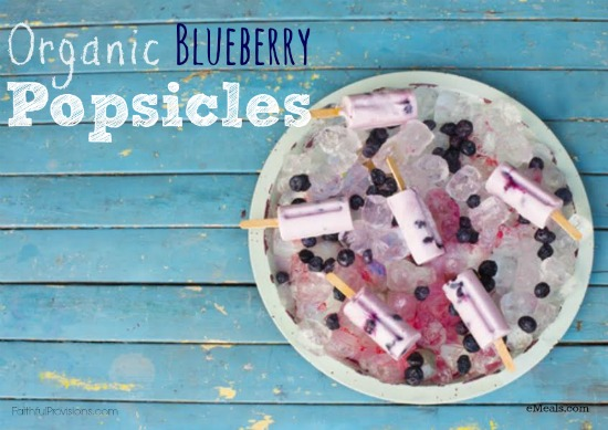 Organic Coconut Blueberry Popsicles | Faithful Provisions
