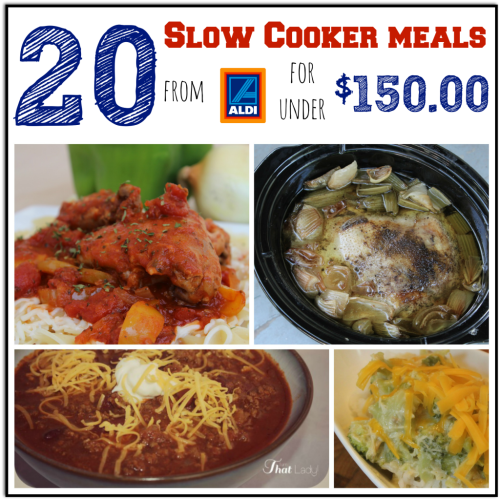 20 Aldi Slow Cooker Meal Plan