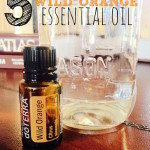 5 Ways to Use Wild Orange Essential Oil