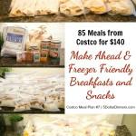 85 Freezer Friendly & Make-Ahead Breakfast & Snacks from Costco