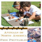 Free Montessori Zoology Lessons Printable