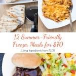 12 Summer Freezer Meals for Under $70