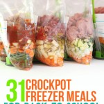31 Crock Pot Freezer Meals for Back to School