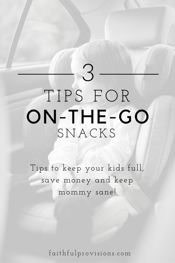 On The Go Snack Ideas