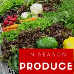 What Produce is In Season {March}
