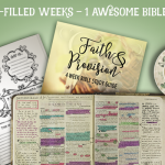 New Bible Study: Faith & Provisions {4 Week Study}