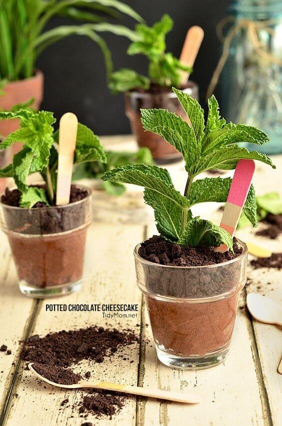 potted chocolate cheesecake