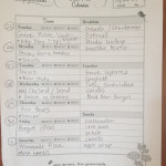 Busy Week Meal Plan + The Beginning of Fall!